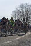 Berühmtes bycicle Tirreno Adriatico Rennen lizenzfreie stockfotografie