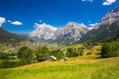 Berühmtes Grindelwald-Tal, grüner Wald, Alpenchalets und Schweizer Alpen, Berner Oberland, die Schweiz Lizenzfreies Stockbild