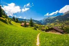 Berühmtes Grindelwald-Tal, grüner Wald, Alpenchalets und Schweizer Alpen, die Schweiz lizenzfreie stockbilder