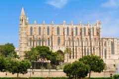 Berühmtes historisches La Seu Cat Palma de Mallorcas der Balearischen Inseln Stockfotos