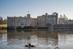Berühmtes Leeds Castle in England - KENT, VEREINIGTES KÖNIGREICH - 27. FEBRUAR 2019 stockfoto