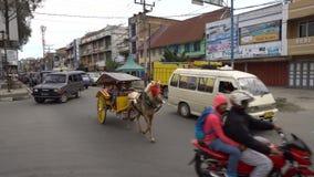 Berastagi Indonezja, Czerwiec, - 19, 2016: Turyści na końskiej karecianej jazdie zdjęcie wideo