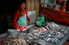 Fish sellers in the local Indonesian authentic and colorful street market stock photos