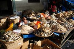 Fish sellers in the local Indonesian authentic and colorful street market royalty free stock image