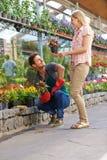 Beratung mit Floristen in im Kleinen stockbilder