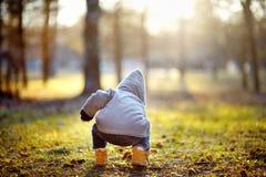 Berbeć chłopiec bawić się outdoors Obraz Stock