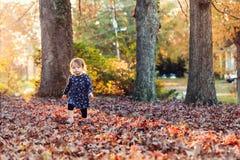 Berbeć dziewczyna bawić się w spadków liściach Fotografia Stock