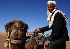 Berber and camel in detail Royalty Free Stock Images