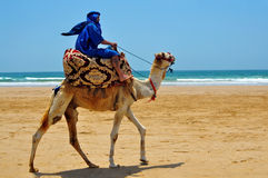 Berber on camel Royalty Free Stock Images