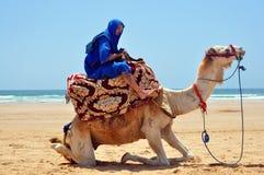 Berber en camello imagenes de archivo