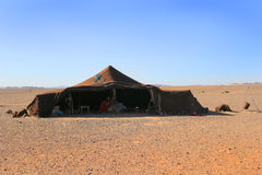 Berber family in tent, Sahara Desert, Morocco Stock Images