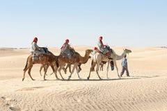 Berber leading tourists on camels. Douz, Kebili, Tunisia - September 17, 2012 : Beduins leading tourists on camels at the Sahara desert on September 17, 2012 in Stock Images