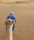Berber man with camel Royalty Free Stock Photos