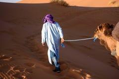 Berber man leading caravan, Hassilabied, Sahara Desert, Morocco Royalty Free Stock Images