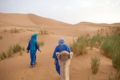 Berber men with camel Royalty Free Stock Photography