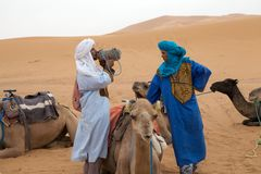 Berber men with camel. Morocco, Erg Chebbi: Berber man in traditional dress with camel. Berbers are the indigenous ethnic group of North Africa west of the Nile stock photo