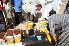 Berber men at the dates fruit market. In the South of Morocco Royalty Free Stock Image