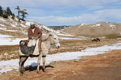 berber moroccan Obrazy Stock