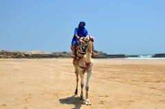 Berber op kameel royalty-vrije stock foto