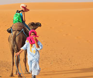 Berber people and turist in Morocco. Turist riding a camel in Merzouga, desert of Morocco Royalty Free Stock Photography