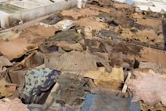 Berber tannery. Tannery Berber Marrakesh in Morocco (in Africa stock photography