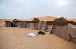 Berber tents in the desert. Morocco, Erg Chebbi: Berber traditional tents in the desert. Erg Chebbi is of Morocco's two Saharan ergs, large dunes formed by wind Royalty Free Stock Photos