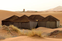 Berber tents in the Sahara Royalty Free Stock Photo