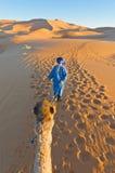 Berber walking with camel at Erg Chebbi, Morocco. Berber walking with camel at Erg Chebbi orange dunes, Morocco Royalty Free Stock Photos