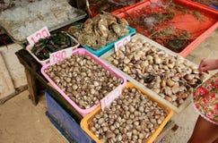 Berberechos frescos, productos del mar antes de limpiar en el mercado de los mariscos del puerto en Tailandia Fotos de archivo
