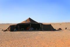 Berberfamilj i tält, Sahara Desert, Marocko Arkivbilder
