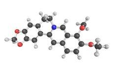 Berberine, un sel d'ammonium quaternaire du protoberberine GR Photos libres de droits