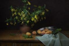 Berberisbloemen in een vaas en abrikozen op een donkere achtergrond Royalty-vrije Stock Afbeelding