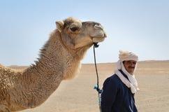 Berberman med hans kamel arkivbild