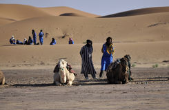 Berbers com os camelos em dunas, april16,2012 Foto de Stock
