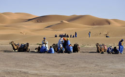 Berbers och kamel på dyner, april 16.2012 royaltyfria foton