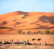 Berbers och vilakamel i den Sahara öknen, Marocko royaltyfri foto