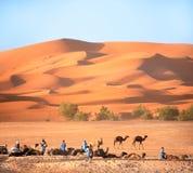 Berbers und stillstehende Kamele in Sahara-Wüste, Marokko lizenzfreies stockfoto