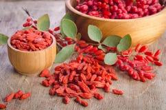 Berberys pospolity i suche goji jagody w pucharach Obrazy Royalty Free