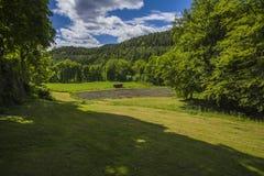 Berbymanor, openlucht-gebied Royalty-vrije Stock Afbeeldingen