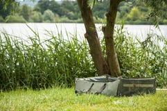 Berceau de carpe de pêche sur le lac Photographie stock libre de droits