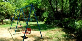 Berceau de parc dans l'environnement verdâtre image libre de droits