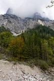 berchtesgaden национальный парк halsalp Германии стоковые фотографии rf