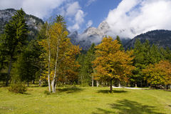 berchtesgaden klausbachvalley国家公园 库存照片