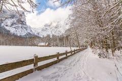 Berchtesgadener nationalpark, Tyskland Arkivbild
