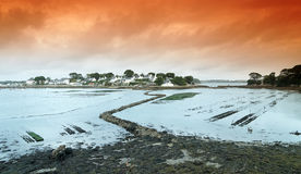 Berder island and oyster farm  in Morbihan Royalty Free Stock Photography