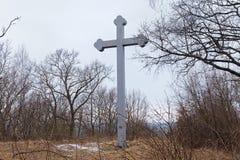 BEREGOVOE,俄罗斯- 2017年3月30日:在布拉格的基督徒圣徒Adalbert的殉教的地方的纪念十字架 免版税图库摄影
