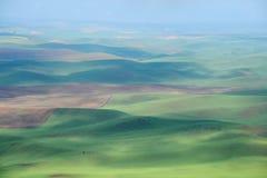 Bereich des grünen Hügels Lizenzfreies Stockfoto