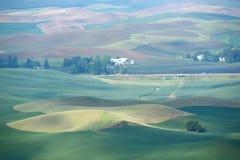 Bereich des grünen Hügels Lizenzfreies Stockbild