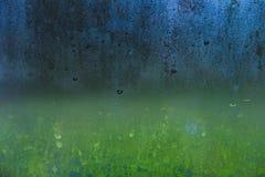 Bereift glassed mit Wassertropfen und grünem Garten hinten Stockbilder