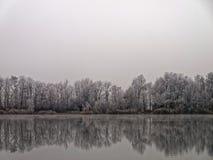 Bereifte Seelandschaft widergespiegelt im Wasser Stockbild